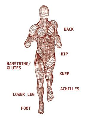 Understanding Your Fascia, Fascia may be the missing piece for your lingering injury – By Julia Lucas